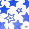 Sterne Nail Vinyls